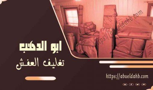 نقل عفش الشيخ زايد