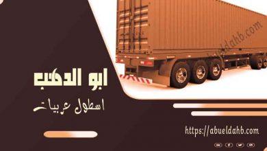 صورة شركات نقل اثاث بدمياط