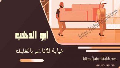 صورة شركة نقل الاثاث بمصر الجديدة