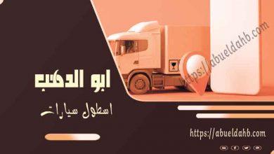 صورة شركات نقل اثاث بالمنيا